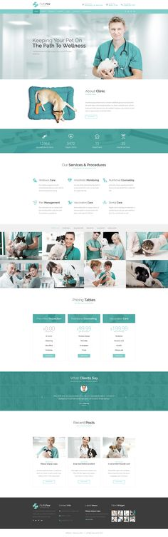 Fluffy Paw | Veterinary Clinic Template on Behance
