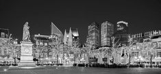 Plein City Square At Night - The Hague Print by Barry O Carroll