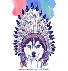 Husky dog portrait with native american indian chief headdress (indian chief mascot, indian tribal headdress, indian headdress). Hand drawn raster  illustration. - stock photo