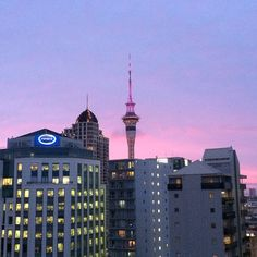 Our view in Auckland, New Zealand