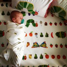 Pottery Barn Kids, Hungry Caterpillar Crib Set. My son enjoying his room his first week!