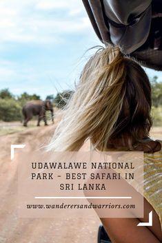 Wanderers & Warriors - Udawalawe National Park – Best Safari In Sri Lanka