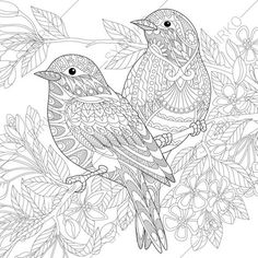 Sparrow Birds Adult Coloring Book Page. by ColoringPageExpress ✖️More Pins Like This One At FOSTERGINGER @ Pinterest✖️