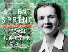 """""""... ask yourself, 'What if I had never seen this before?  What if I knew I would never see it again?""""'  Rachel Carson"""