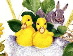 Bunny & Ducklings