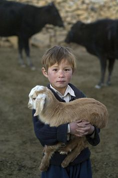 Bamiyan, Afghanistan, 2006 - by Steve McCurry Steve Mccurry, Precious Children, Beautiful Children, Baby Goats, Holding Baby, Auf Dem Land, Creatures, Cute Animals, Wild Animals