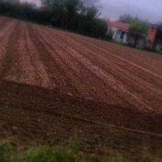 Il terreno è preparato - Fields ready to be planted