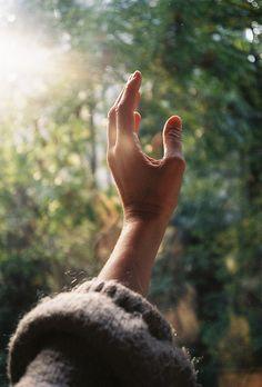 Hands #4  frumentum:    sem título by Sumeja on Flickr.