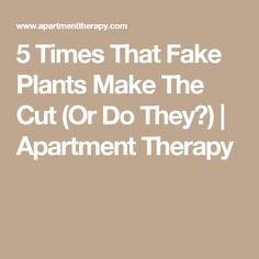 5 Times That Fake Plants Make The Cut (Or Do They?)   Apartment Therapy