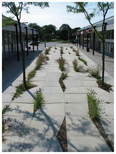 Image result for healthy designed landscapes