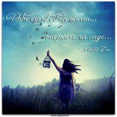 La cage de vos peurs. - Le site de Maître Zen