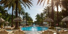 The World Famous Raleigh Hotel Pool - Miami Beach's Most Famous Pool  Colors for new patio