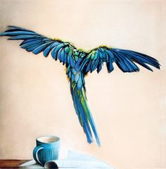 blank card  macaw bird blue feathers  flying by KatkasArtStudio