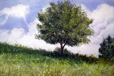 Tree in field Charles Cherry