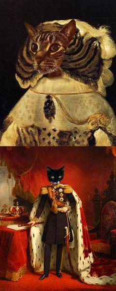 Very fancy cats