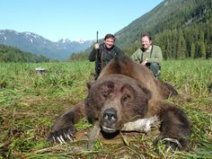 World Record Grizzly Bear | ... & Outfitter - North Coast Adventures World Record Grizzly Bear Hunts