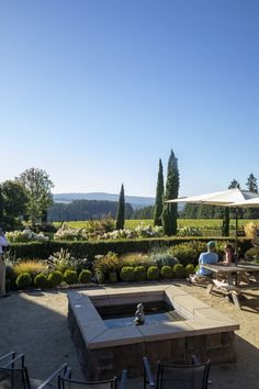 Take in the vines and the views and dream of drinking unique Oregon pinot noir soon with this virtual tour of Oregon's wine country. Oregon Pinot Noir, Oregon Wine Country, Willamette Valley, Washington County, Virtual Tour, Vines, Drinking, Tours, Unique
