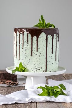 This Mint Chocolate Chip Cake is a mint lover s dream Layers of decadent chocolate cake topped with a silky mint chip buttercream Decadent Chocolate Cake, Chocolate Chip Cake, Mint Chocolate Chips, Chocolate Desserts, Chocolate Buttercream, Chocolate Ganache, White Chocolate, Food Cakes, Cupcake Cakes