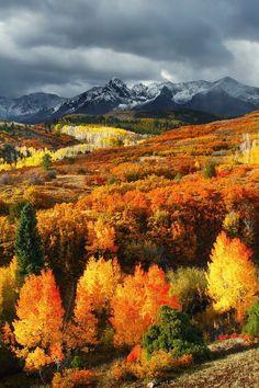 Autumn in Montana... amazing.♥
