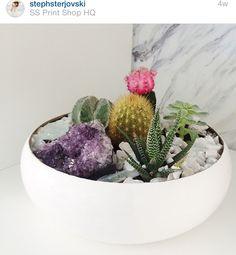 Crystals & Cactus