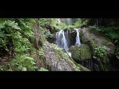 Krátký film o vodě - YouTube Film, Waterfall, Youtube, Outdoor, Movie, Outdoors, Film Stock, Cinema, Waterfalls