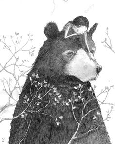 :: Sweet Illustrated Storytime :: Illustration by Graham Franciose :: Bear with… Art And Illustration, Illustration Inspiration, Friends Illustration, Illustration Children, Art Illustrations, Art D'ours, Bestest Friend, Bear Art, Art Design
