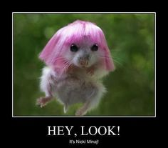 It's Nicki Minaj!