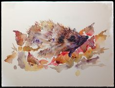 Hetty the Hedgehog watercolour painting by Jane Davies available as a LIMITED EDITION PRINT