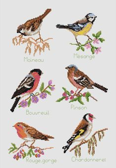 Cross stitch embroidery - The Birds - Ets Anne Loison Cross Stitch Quotes, Xmas Cross Stitch, Cross Stitch Pictures, Cross Stitch Heart, Cross Stitch Borders, Cross Stitch Alphabet, Cross Stitch Animals, Cross Stitch Designs, Cross Stitching
