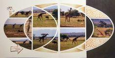 Carine Girafe 2