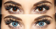 Blue Eyeshadow for Brown Eyes – Yahoo Image Search Results - Eye Makeup Blue Eyeshadow For Brown Eyes, Dark Brown Eyes, Kisses, Contact Lenses For Brown Eyes, Best Colored Contacts, Yahoo Images, Image Search, Eye Makeup, Cook