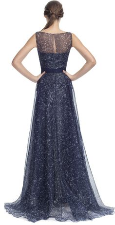 Carolina Herrera Blue Constellation Organza Sleeveless Gown with Crystal- embellished applique detail