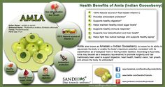 #Amla is the major ingridient in most ayurvedic products, especially in #Triphala #churna, amla is a potent fruit known for promoting health and longevity. Amla balances all three doshas, that is, vata, pitta, and kapha. It also purifies blood, strengthening the heart, stimulating hair growth, enhancing concentration and memory and alleviating respiratory problems. #Ayurveda www.sandhuproducts.com/Amalaki