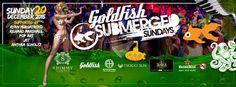 Big Party, Beach Club, Goldfish, Sunday, Domingo, Red Fish