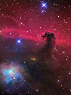 - Det er bortimot umulig å plukke ut bare ett favorittbilde av himmelobjekter, men jeg tror jeg velger meg et nydelig portrett av Hestehodetåken, sier Jan-Erik Ovaldsen. Denne tåken er en berømt ansamling av støv og ikke-lysende gass like nedenfor den venstre av de tre stjernene i Orions belte. Foto: R. Jay GaBany