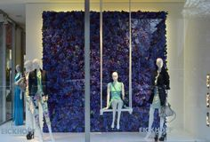 Love the use of real flowers here... gives great depth! ---> Eickhoff shop windows Spring, Düsseldorf