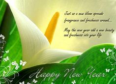 best and advance happy new year 2017 greetings wishes sms quotes happy new year wishes