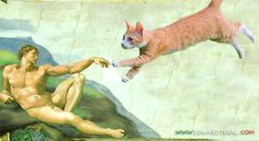 Creation of Adam The Creation Of Adam, Weird, Cats, Painting, Gatos, Painting Art, Paintings, Cat, Kitty