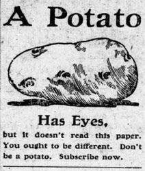 Newspaper advertisement for Sylvan Valley News subscription, 1910 by North Carolina Digital Heritage Center, via Flickr