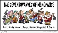 7 Dwarves of Menopause. Hilarious. This is applicable to pregnancy too