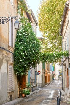 Why You Should Visit the South of France this Year | Sunday Chapter