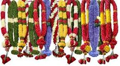 Image result for flowers for pooja