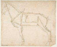 Measured Drawing of a Horse Facing Left (recto). Andrea del Verrocchio, ca. 1480-88. Pen and dark brown ink, over traces of black chalk.