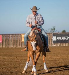 Control Your Horse's Body. Can you put each of your horse's feet where you want them? Learn how with my tips.