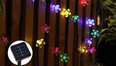 Solar-Powered Floral Lights - 5 Colours Set your garden aglow with Solar-Powered Floral Lights      These 7m light-strings feature 50 colourful LEDs      Choose from white, blue, warm white, purple, or multi-coloured (yellow, white, blue and green)      Powered via solar panel - no wiring required      Waterproof enough to withstand the rain      Provides 8-10 hours of light on a full charge -...