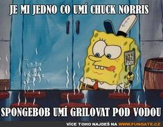 Je mi jedno co umí Chuck Norris Funny Images, Funny Pictures, Chuck Norris, Spongebob Squarepants, Funny Animals, Bff, Funny Jokes, Haha, Avengers