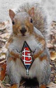 STL Rally-Squirrel #gocards #redtober