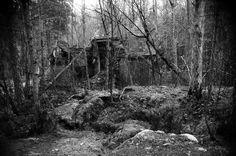 2014_huhtikuu_Kruunuvuori_Nikon-FA_Series-E-36-72_Polypan-F_063 Helsinki, Finland, Nikon, Gothic, Explore, Black And White, Plants, Painting, Art