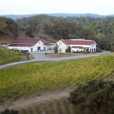 Sonoma County Wineries to Visit:  Copain - From Copain's mountainside perch, visitors look out over the gorgeous Russian River Valley, which produces the grapes for its superb Pinot Noir. #wines #vino #wineries #winetours #sonomacounty #winelover