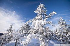 L'hiver en Abitibi-Témiscamingue. Photo: Hugo Lacroix.